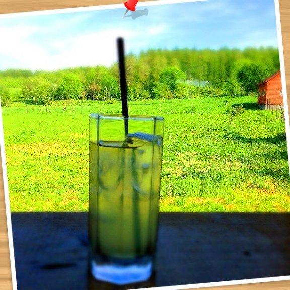 草原の中にある石蔵カフェでの風景