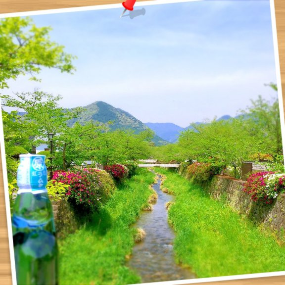おはようございます〜☆ 昨日うなぎを食べた帰りのお店の前にある山口市の一の坂川です(*^^*) 桜シーズンと蛍のシーズンが有名なんですが今はツツジが咲き始めて綺麗で癒されましたよ♬ 通り沿いでラムネ(ブルーハワイ味)を購入し少しだけ散策しました☆ 今朝の曲はダイアー・ストレイツです♬ http://youtu.be/wTP2RUD_cL0 今日からゴールデンウィークの方も暦どおりの方、お仕事の方も素敵な週末をお過ごし下さい☆