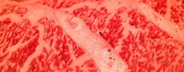 白老黒毛和牛屋 お肉ダイニング 焼肉 わ 札幌南平岸店