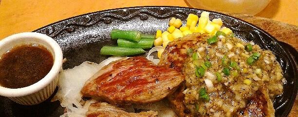 ステーキハンバーグ&サラダバー けん 辻堂店