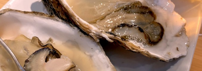 BAY-OYSTER