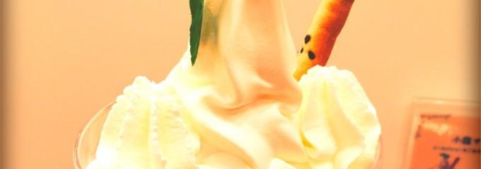 WHITE Cosy よつ葉