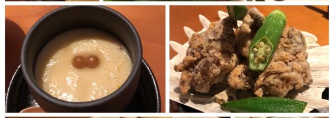 ツバクロすっぽん食堂 大阪店