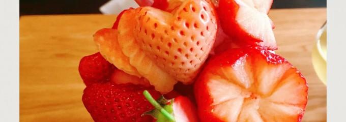 フルーツシェフ (Fruit Chef)