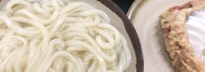 讃岐うどん 桜製麺 和泉南店