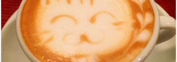 Mouffe Cafe (ムッフカフェ)