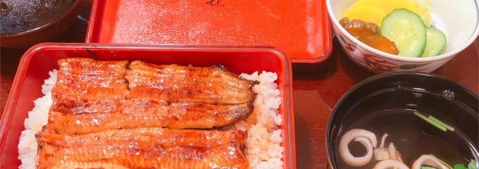 山喜 うなぎ日本料理