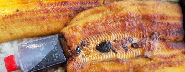 天然鰻のとほつあふみ