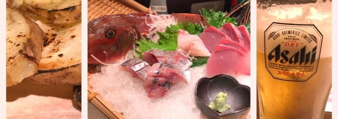近江ゆず地鶏と魚貝専門店  炭火焼のかん家  JR近江八幡駅前店 近江八幡