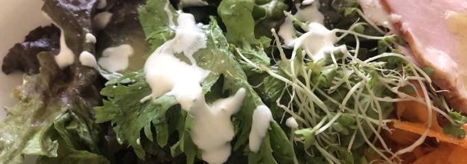 dish organic cafe