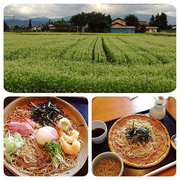 安曇野の美味しい蕎麦(そば)絶対食べておきたい人気店ランキング