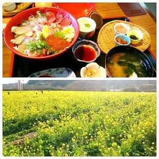 静岡南伊豆町の地元グルメを食べるならここ!おすすめ人気店ランキング